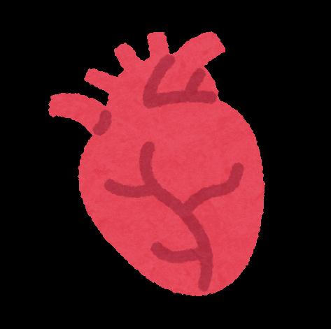数 スポーツ 心臓 心拍